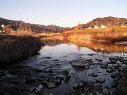 水質浄化について考える会