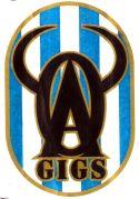 ミラクルサッカー!OAギグス