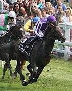 2012ダービー馬キャメロット