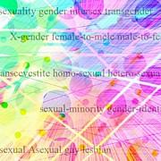 セクシュアリティの心理学