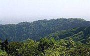 高尾山に月1で登ろう♪