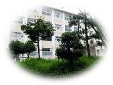 勝山南高等学校