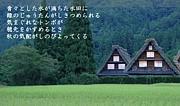 東京造形大学家具ゼミ95