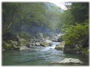 【海の日限定】釣り&温泉@鹿留
