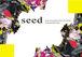 ファッションショー【seed】