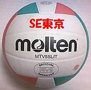 バレーボールチーム「SE東京」