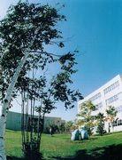 北海道教育大学附属札幌小中学校