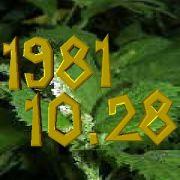 1981年10月28日生まれ