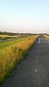 淀川サイクリングロード