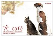 """函館DogCafe&Run """" 犬Cafe """""""