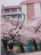 金沢泉丘サッカー部