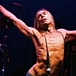 IGGY POP -GOD FATHER OF PUNK