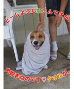 love タオル☆