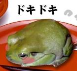 爬虫類・両生類好き@中国地方