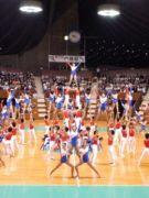 日本体育大学体操部