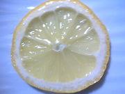レモンの砂糖づけ