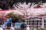 舞鶴聖母幼稚園