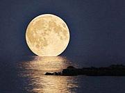 スーパームーン(Super moon)
