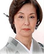 日本文字の力党
