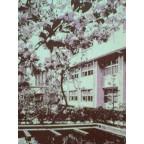 三勲小学校97年春卒