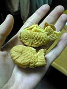 鯛プチ 大漁