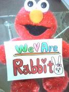 We are★RABBIT