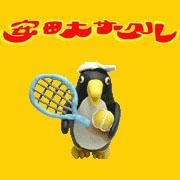 テニスしようよin一宮、稲沢