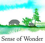 Sense of  Wonder 2011