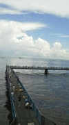 本牧 海釣り公園