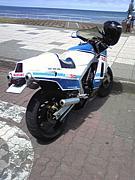 SUZUKI RG500Γ
