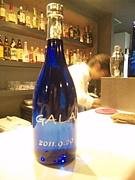 GALA 〜tachinomi〜