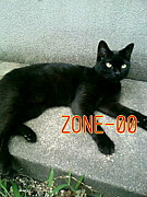ZONE-00コスって神秘!!in関西