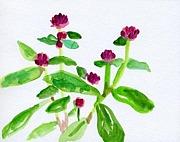 かわいい花(仮)ブログ