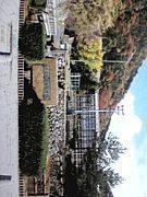 2009年卒★鳥取西高