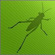 Rhino Grasshopper