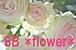 SB *flower*