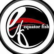equator fish