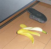 バナナの皮部