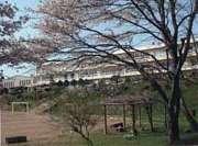 茨城県立小瀬高等学校