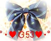 ゚・+★G53★+・゚