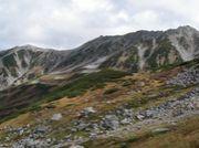 富山県高山植物保護パトロール