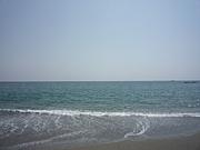 きれいな海や川が好き