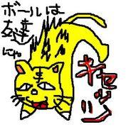 ☆キャッツ☆