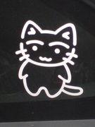 子猫のちぃちゃん
