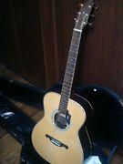 Acoustic guitar James