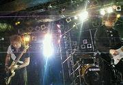 F.size.free(公認)