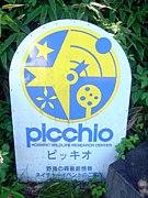 ピッキオ -picchio-