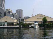 T.Y.Harbor  (TY ハーバー)