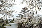 2013年大河【八重の桜】