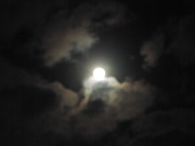 空を眺めて・・・